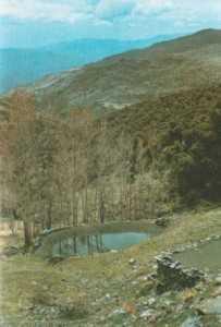 Balsa de riego tradicional./ Archivo GR