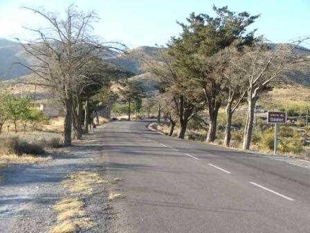 Carretera autonómica A-391.