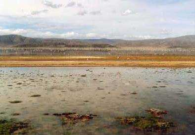 Lago Poopó.