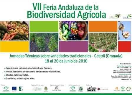 Cartel de la Feria Andaluza de la BioDiversidad Agrócola de Castril.