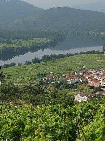 Un ejemplo de paisaje del Ribeiro.