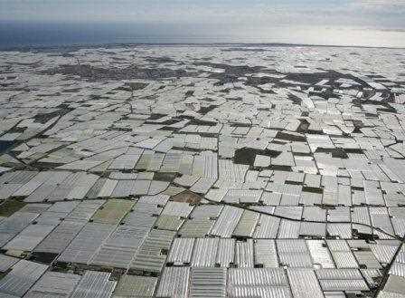 Un ejemplo de agricultura intensiva con una 'mar de plásticos'.