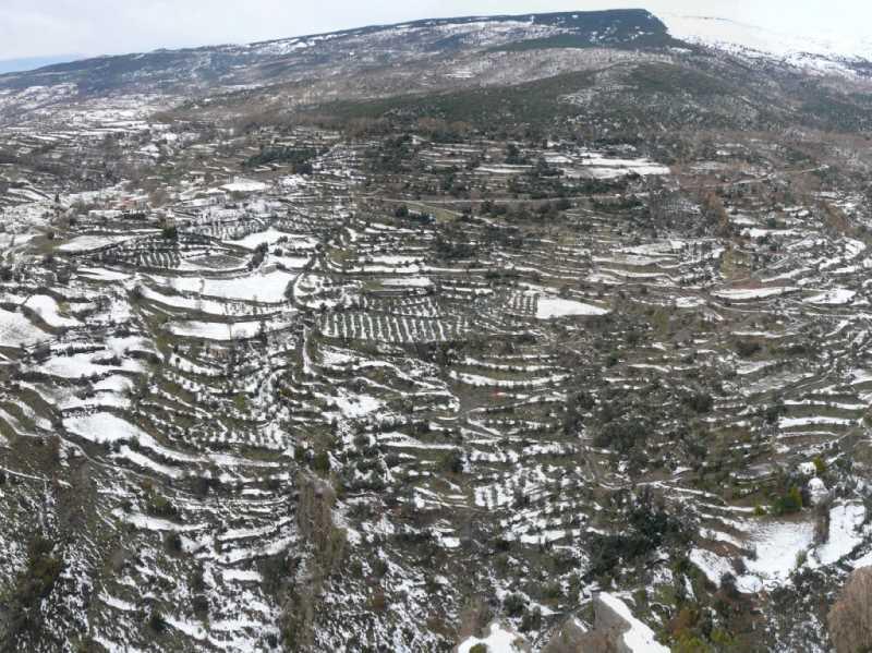 Paratas de cultivo en la Alpujarra.