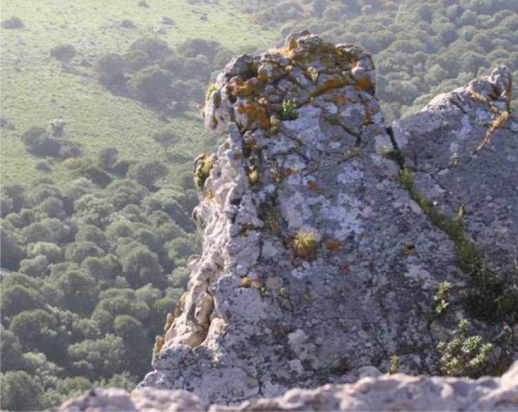 Los roquedos desprovistos de vegetación coronan gran parte del cierre de la cuenca visual de la Ensenada respecto al entorno paisajístico