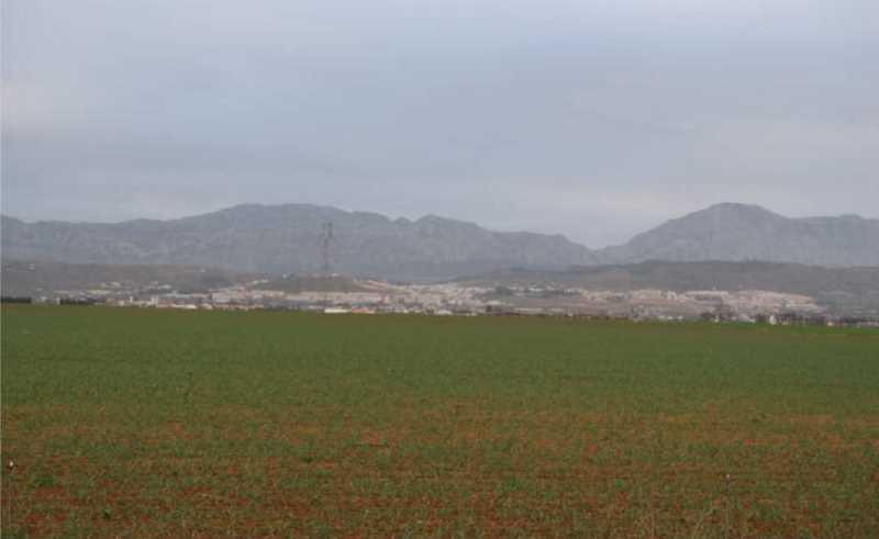 Vista de la vega con Antequera y el Torcal al fondo