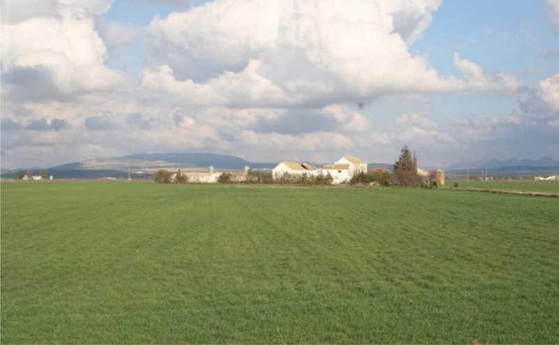 Elemento de patrimonio rural: pequeña explotación agraria y cortijo.