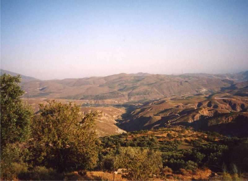 Los cultivos aterrazados dan paso a montes deforestados