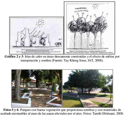 Imagenes del artículo