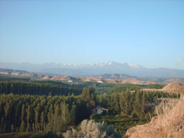 Panoramica de la comarca con Sierra Nevada al fondo