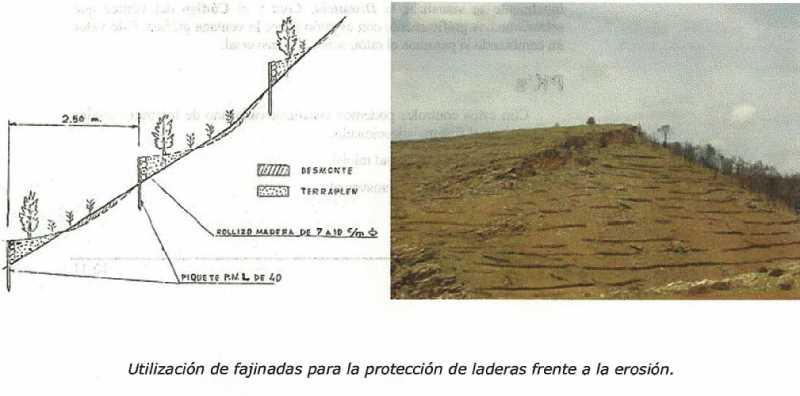 Fajinadas en laderas. FUENTE: magrama.gob.es