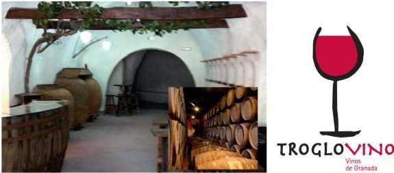 Imagen la sala Bodega. Fuente: Dosier de prensa sobre Trópolis