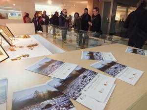 """Exposición """"El bosque Encantado"""". FUENTE: ideal.es"""