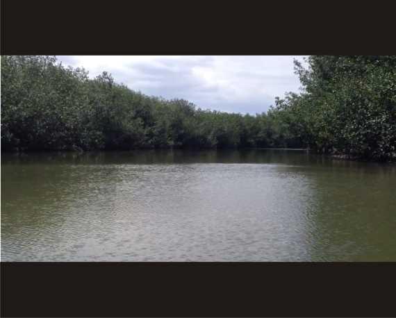 Captura del video. FUENTE: elaboracion propia