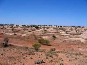 Paisaje antropizado de White Cliffs. FUENTE: webwombat.com.au