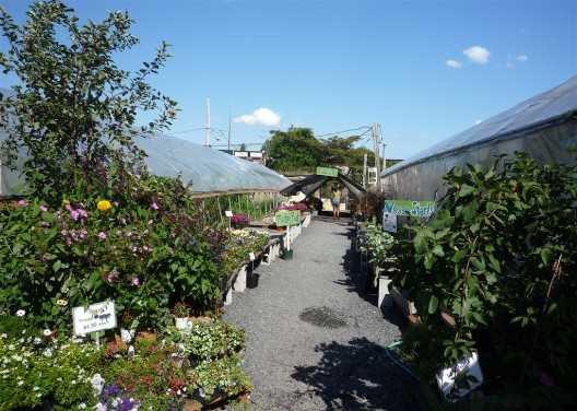 Greengrow Farm IV.Fuente: archdaily.com