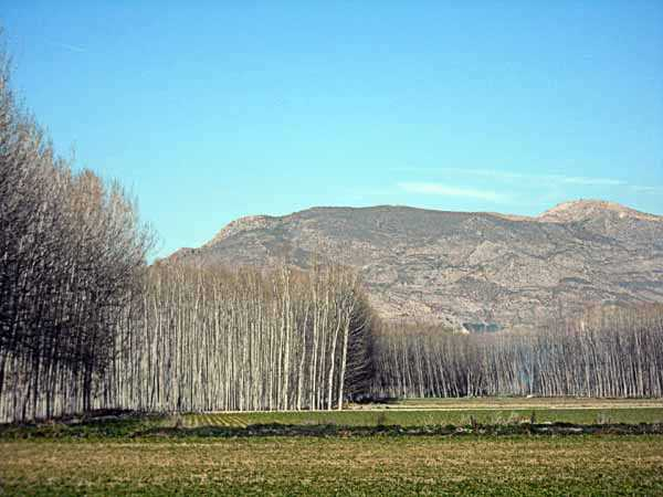 "Imagen del II Concurso ""La Vega en la Memoria"". Fuente:vegaeduca.org."