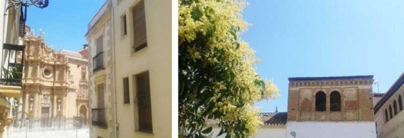 Imágenes del Centro histórico de Guadix (Granada). Iglesia-Catedral de la Encarnación y casa-palacio del centro histórico. Fuente: elaboración propia.