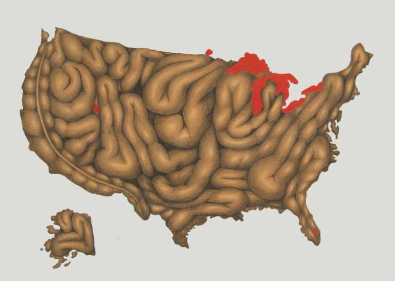 """Mapa del """"dolor"""" de Estados Unidos. Fuente: rosaliabanet.blogspot.com"""