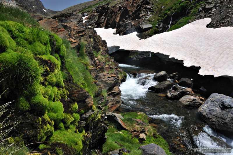 Río Lanjarón. Fuente: www.granadanatural.com
